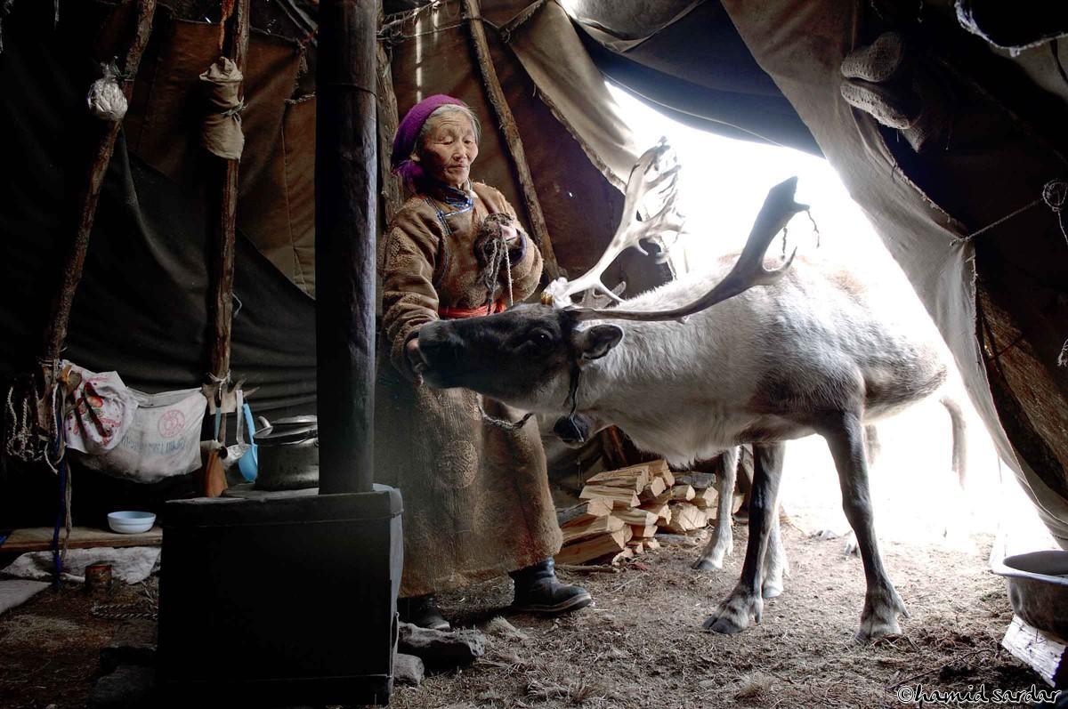 nomadic-life-hamid-sardar-afkhami-03