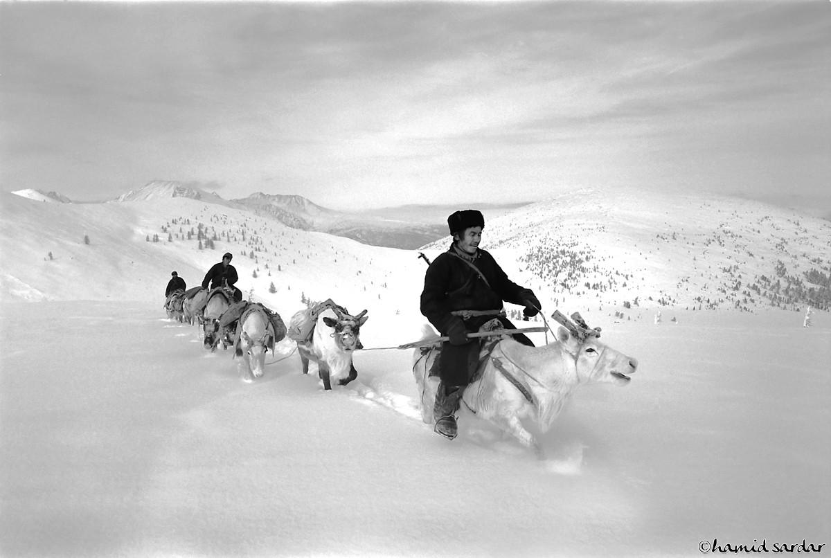 nomadic-life-hamid-sardar-afkhami-08