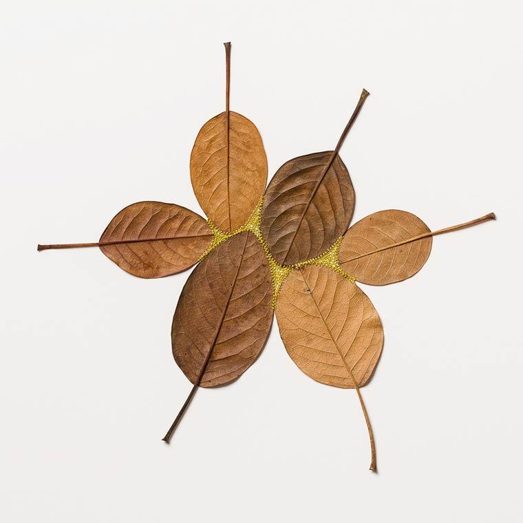Susanna-Bauer-Leaf-Art-13