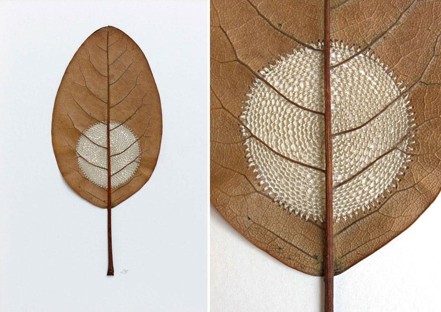 Susanna-Bauer-Leaf-Art-14