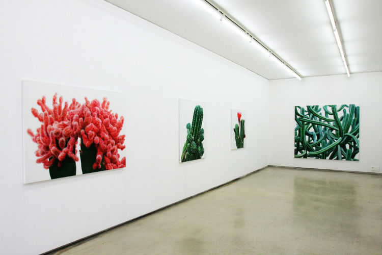 kwang_ho_lee_touch_hyperrealist_cactus_12
