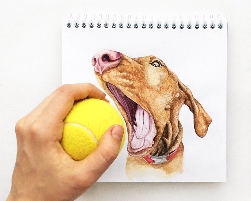 valerie-susik-interactive-dog-illustrations-01