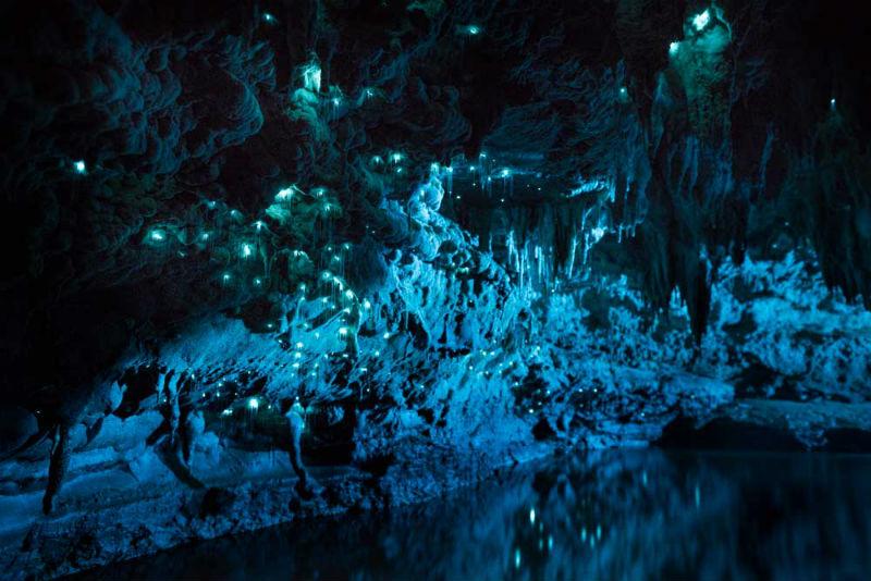 joseph_michael_glowworms_limestone_new_zealand_01