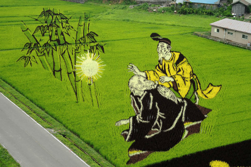 rice_paddy_art_inakadate_07