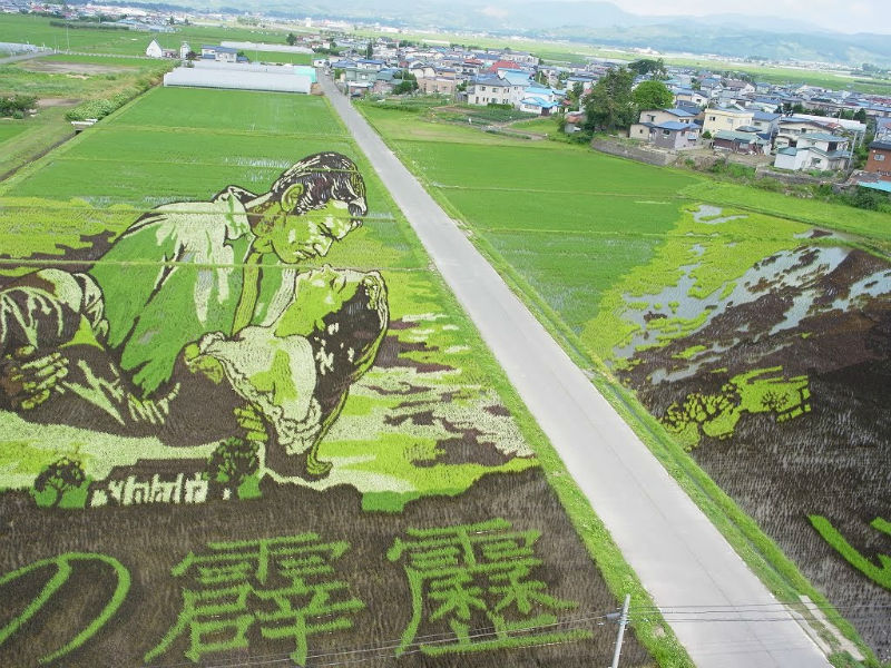 rice_paddy_art_inakadate_11
