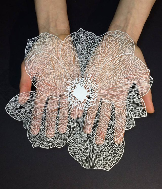 maude-white-paper-art-01