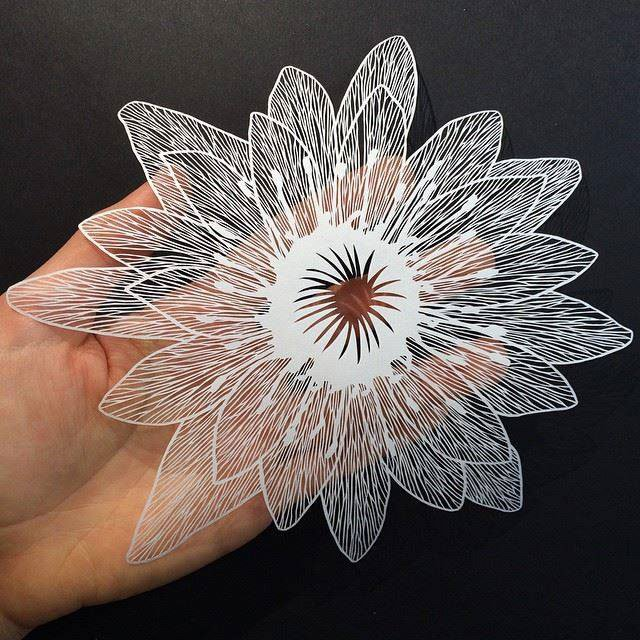maude-white-paper-art-07
