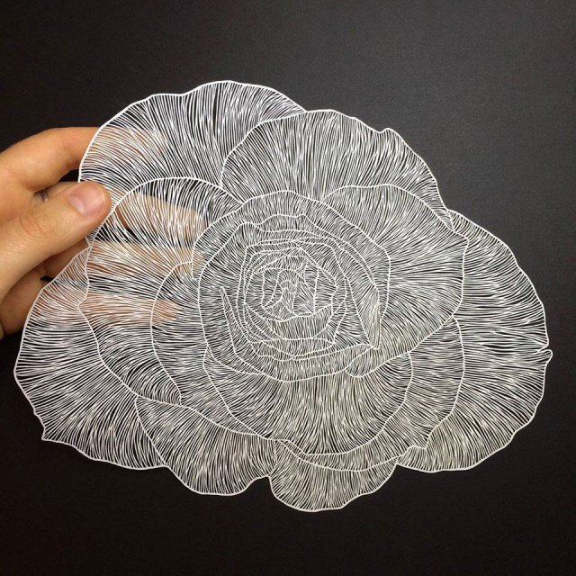 maude-white-paper-art-09
