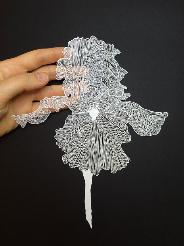maude-white-paper-art-13