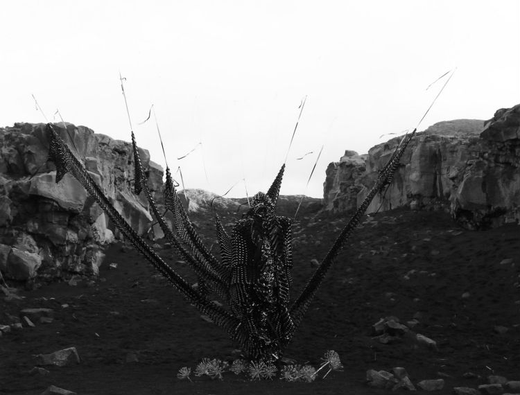 humantropy-philip-ob-rey-vhs-07