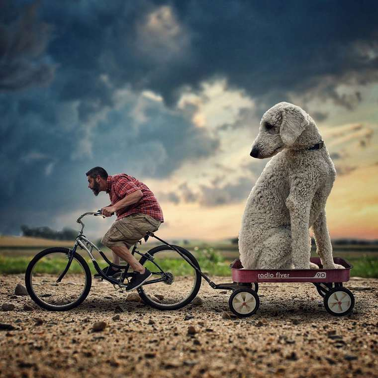 Christopher-Cline-giant-dog-juji-01