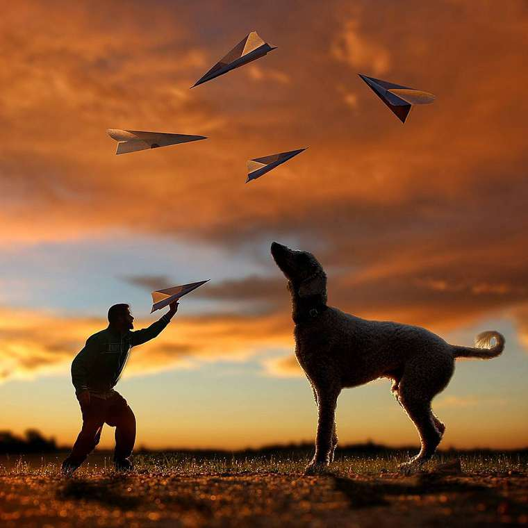 Christopher-Cline-giant-dog-juji-06