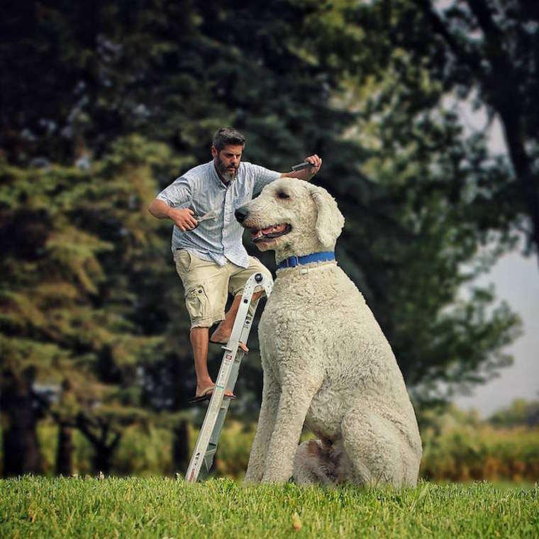 Christopher-Cline-giant-dog-juji-11