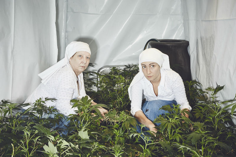 Sisters-of-the-Valley-Shaughn-Crawford-John-DuBois-cannabis-medical-marijuana-16