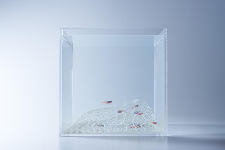 Misawa_Design_Institute_fish_tank_aquarium_01