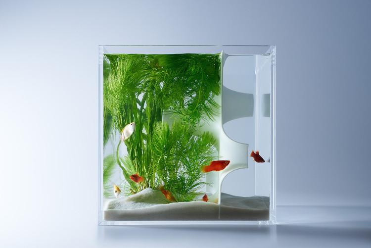 Misawa_Design_Institute_fish_tank_aquarium_05