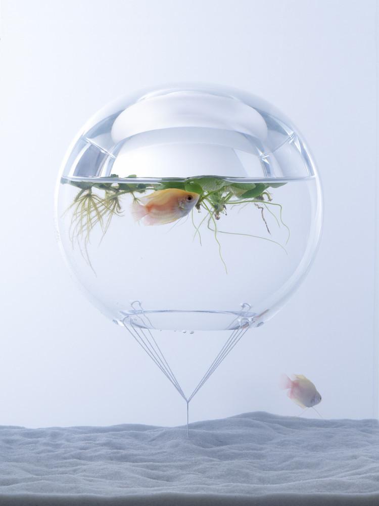 Misawa_Design_Institute_fish_tank_aquarium_11
